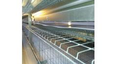 bande transporteuse de pp, ceinture de transporteur de fumier, ceinture de retrait de fumier, ceinture de cage de volaille, ferme de poulet